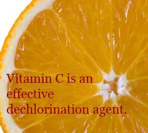 Vitamin C shower head